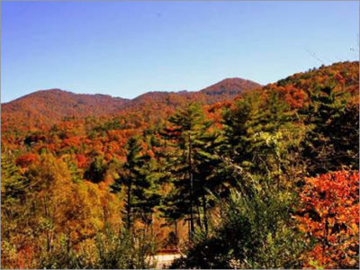 available lot asheville